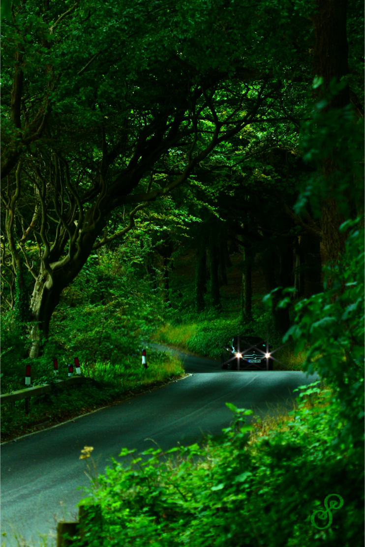 Black Mercedes Benz Driving On A Forest Road